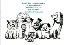 Buddy Dog Humane Society: 151 Boston Post Road, Sudbury, MA | (978) 443-6990