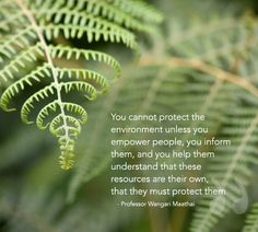 """""""You cannot protect the environment unless you empower people..."""" Quote by Professor Wangari Maathai"""