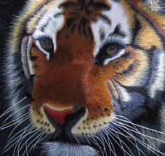 Chinese Tiger Art | Chinese embroidery art ( Thumbnail View • Enlarged View )