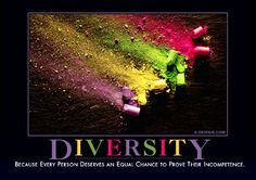 Diversity:  Because every person deserves an equal chance to prove their incompetence.