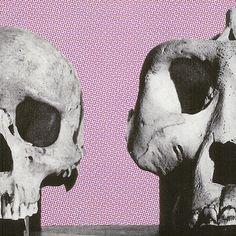 """Sapiens & Ape"" collage by Marina Molares"