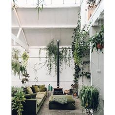 Indoor plants design makes your living space more comfortable, breathable, and luxurious. See these 30 ideas on how to display houseplants for inspiration. Patio Interior, Interior Plants, Interior And Exterior, Interior Design, Interior Livingroom, Indoor Garden, Indoor Plants, Home And Garden, Garden Living