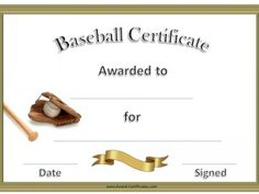 Nice Baseball Awards
