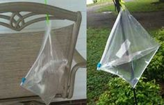 ziploc bag with water = fly repellent.  Humid today and deer flies are biting like mad!  Hung one of these under my picnic table and have not had a fly after the first few minutes.  If I'm lyin', I'm dyin'!