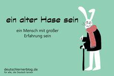 ein alter Hase sein - Redewendungen - Deutsch lernen