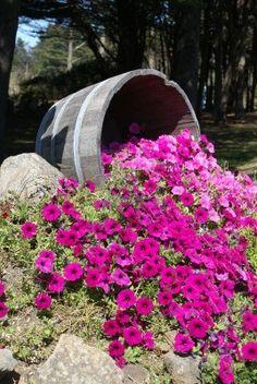 Barrel of flowers Stock Photo
