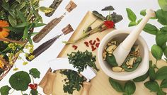 [ Tips: Fresh Herb Tips ] Advice on how to pick store and cook with aromatic plants ~ from Epicurious