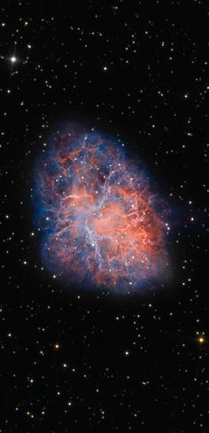 The Crab Nebula. Reminds me of the human heart! This sharp, ground-based telescopic view uses narrowband data to track emission from ionized oxygen and hydrogen atoms (in blue and red) and explore the tangled filaments within the still expanding cloud. Hubble Space, Space Telescope, Space And Astronomy, Crab Nebula, Orion Nebula, Cosmos, Interstellar, Across The Universe, To Infinity And Beyond