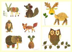 animales-del-bosque