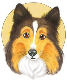 """Tristan, a sheltie dog hero of the book """"A Sheltie's Tale"""" by Len White Clip Art, Sheltie, Hangers, My Drawings, The Book, Childrens Books, Things That Bounce, Whimsical, Bunny"""