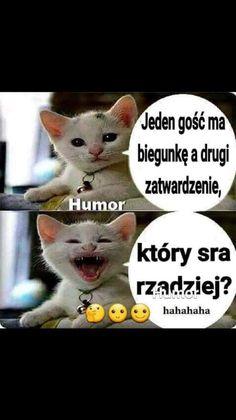 Weekend Humor, Haha, Graffiti, Geek Stuff, Instagram, Funny, Animals, Smile, Jokes With Pictures