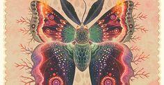 http://www.freepik.com/blog/beautifully-animated-gifs-butterflies-months-lepidoptera-obscura-order/