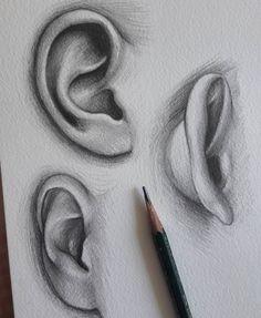 Ear drawing art in 2019 draw, pencil art, art sketches. Art Drawings Sketches Simple, Pencil Art Drawings, Realistic Drawings, Cool Drawings, Drawing Drawing, Drawing Tips, Anatomy Drawing, Anatomy Art, Drawing Ideas