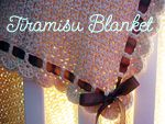 tiramisu blanket   made this,ripped it out,rolled up the yarn, and then make the basket weave for E...