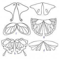 how to draw fairy wings