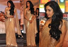 Sridevi's saree - super pretty! I'm so obsessed with shimmer *sigh*