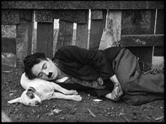 Charlie Chaplin in A dogs life. So cute! My dog looks just like him!<3