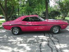 1972 Panther Pink Dodge Challenger <3