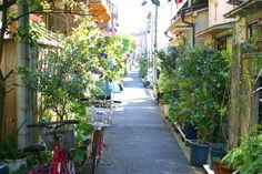 Alley in downtown  (Kyojima,Sumida Ward)