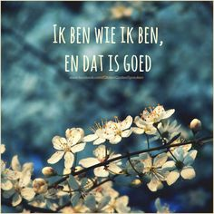 En dat is goed! True Quotes, Words Quotes, Best Quotes, Qoutes, Sayings, Proverbs 22 1, Mount Of Olives, Matthew 24, Dutch Quotes