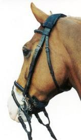 Shires Equestrian Diamond Trail Browband for English Horse Bridles