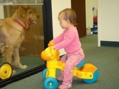 Our Version of Pet Therapy - Re-pinned by @PediaStaff – Please Visit http://ht.ly/63sNt for all our pediatric therapy pins