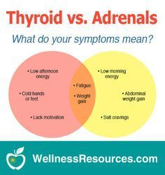 Hypothyroidism Diet - A sluggish thyroid and adrenal fatigue often have similar symptoms with important differences. Discover what your symptoms mean! - Get the Entire Hypothyroidism Revolution System Today Thyroid Disease Symptoms, Hypothyroidism Diet, Thyroid Diet, Thyroid Issues, Thyroid Problems, Autoimmune Disease, Addison's Disease, Hip Problems, Thyroid Gland