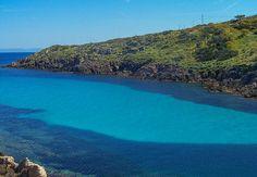 Asinara - Cala d'Oliva - Sardegna - Italy.