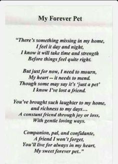 Losing a pet means losing a best friend dont want to think when my Sally will leave me I Love Dogs, Puppy Love, Pet Poems, Dog Passed Away, Pet Loss Grief, Pet Remembrance, Losing A Pet, Losing A Cat Quote, Animal Quotes
