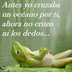 Antes yo cruzaba un océano por tí, ahora no cruzo ni los dedos #desamor #corazon_roto #mal_de_amores #no_me_quiere
