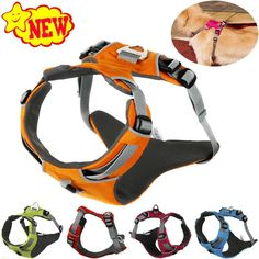 2017 NEW Reflective Dog Harness Accessories Pet Dog Training Vest For Small Large Dogs Adjustable Professional Harness 5 Colors -  Get free shipping. We provide the discount of finest and low cost which integrated super save shipping for 2017 NEW Reflective Dog Harness Accessories Pet Dog Training Vest for Small Large Dogs Adjustable Professional Harness 5 Colors or any product.  I think you are very happy To be Get 2017 NEW Reflective Dog Harness Accessories Pet Dog Training Vest for Small