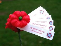 """We make a donation to the VFW by purchasing artificial red poppies.  Our veterans hand them out at our local gas stations and grocery stores.  Moina Michael wrote the poem, """"We cherish too, the Poppy red. That grows on field where valor led, It seems to signal to the skies. That blood of heroes never dies.""""  She conceived the idea to wear poppies on Memorial day in honor of those who died serving the nation during war."""