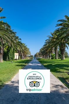 🌿🌿Caravia Beach Hotel & Bungalows is a proud recipient of Tripadvisor Certificate of Excellence 2020  for the 5th year row. We are honored to have been awarded and your continued support and loyalty means the world to #teamcaravia, whose dedication and hard work bring such awards!  Thank you!🌿🌿   #kos #greece #caraviabeach #certificateofexcellence Community Activities, Beach Hotels, Bungalows, Hard Work, Loyalty, 5 Years, Kos, Certificate, The Row