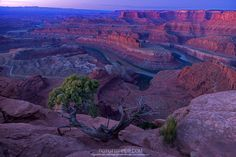 https://flic.kr/p/q6zpgn   Dead Horse Point   'Dead Horse Point' in Utah.   Each time I visit this place I get a totally different kind of light. Sony A7R with Canon 24-105mm.