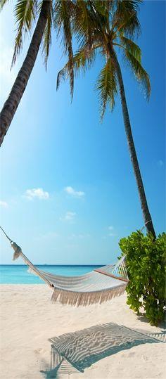 Wunderschöne Strand #Insel - Maldiven (25+ Bilder)