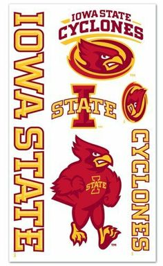 Iowa State Cyclones Temporary Tattoos Easily Removed With Household Rubbing Alcohol Or Baby Oil by CSY. $27.99. Iowa State Cyclones Temporary Tattoos.. The tattoos are completely safe, non-toxic, hypo-allergenic, and all ingredients are FDA regulated . They last for days and can be easily removed with household rubbing alcohol or baby oil.. What a fun way to show your team spirit.. Each package includes one sheet of 10 tattoos.. Made by WinCraft.. Save 61%!