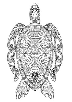 gorgeous sea turtle coloring page  turtle coloring pages adult coloring book pages printable