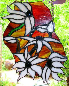 AUSTRALIAN NATIVE FLANNEL FLOWERS suncatcher stained glass art READY TO HANG #Handmade #SuncatcherReadytoHang
