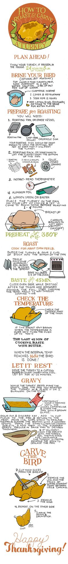 Illustrated Bites Turkey