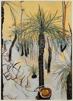 Cressida Campbell (Australian, b. Xanthorrhoea, Hand-coloured woodblock print, 90 x 64 cm. Botanical Drawings, Botanical Illustration, Botanical Prints, Graphic Illustration, Aboriginal Art, Australian Artists, Woodblock Print, Art Auction, Gravure