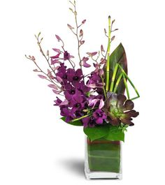 Romantic, elegant, and luxurious - they'll be thrilled! Deep purple stems of dendrobium orchids stand out among lush green hues, in an artfully modern design.     Full stems of dendrobium orchids, a succulent plant, and high end greens are arranged in a modern rectangular glass cube.