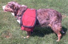 makepackside_make your own dog pack