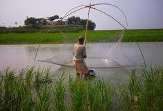 Bangladesh - Collections - Google+
