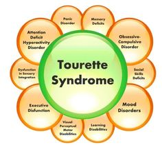 Tourette Syndrome currently impacts 1 out of residents in U. This post discusses the various Tourette Syndrome (TS) symptoms and treatment options Mental Illness Help, Teacher Checklist, Adhd Facts, Self Advocacy, Compulsive Disorder, Autism Parenting, Thyroid Problems, Behavioral Therapy, Social Anxiety