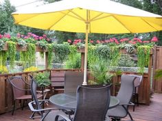 Garten Sichtschutz hängepflanzen sonnenschirm holzzaun