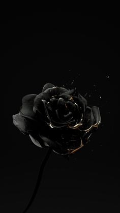 """Roses Are Dead – Vol. 4 """"Black and Gold"""" on Behance Black And Gold Aesthetic, Black Aesthetic Wallpaper, Iphone Wallpaper Tumblr Aesthetic, Aesthetic Backgrounds, Aesthetic Wallpapers, Aesthetic Drawings, Aesthetic Pictures, Aesthetic Stickers, Black Background Wallpaper"""