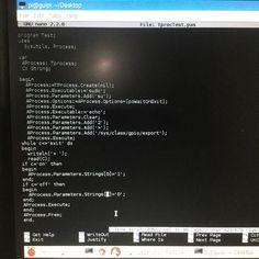 #pascal #process #executable #exe #programming #raspberrypi #GPIO #lazarusIDE #programer #arduino #quantummechanics by quantum_p