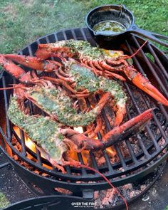 Shrimp Recipes, Fish Recipes, Great Recipes, Chicken Recipes, Recipes Dinner, Grilled Lobster Recipes, Drink Recipes, Fire Cooking, Outdoor Cooking