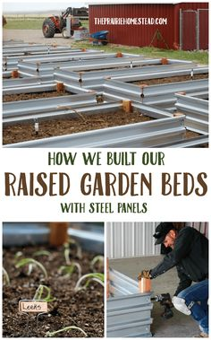how we built raised garden beds with steel panels
