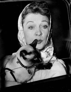 Actress Vivien Leigh and her siamese cat, photo undated